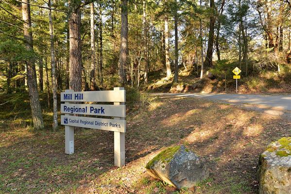 Area Shot - Mill Hill Park
