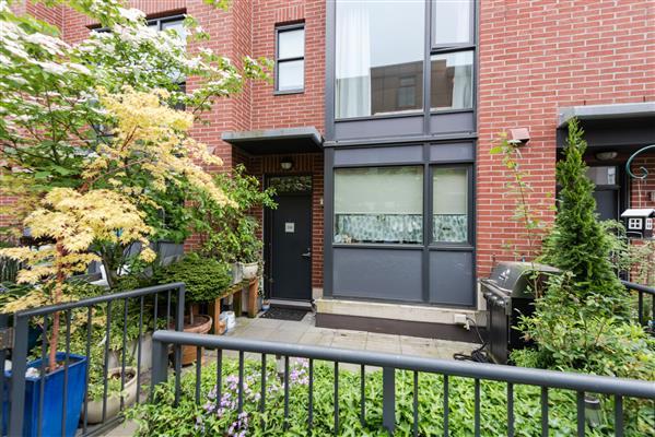 Entrance/ Courtyard