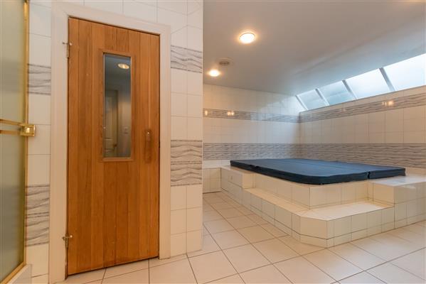 Sauna / Hot Tub