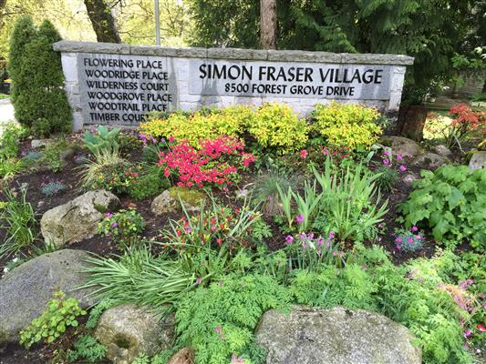 Simon Fraser Village