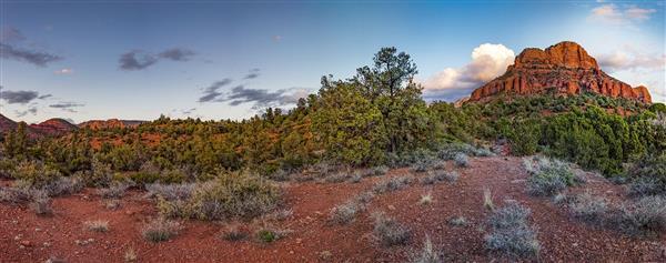 Red Rock Views
