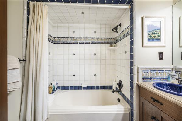 Down Stairs Full Bath