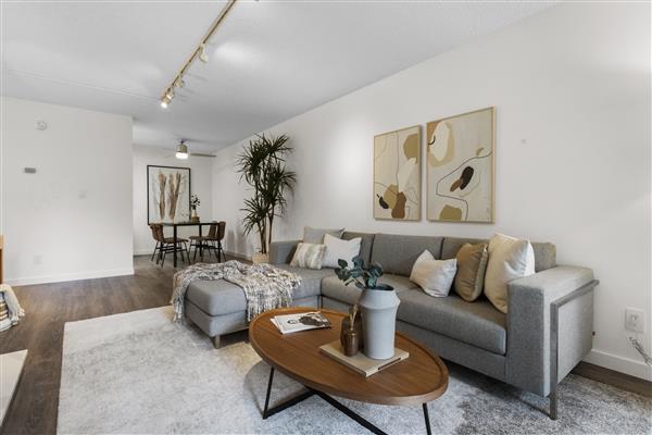 Living / Dining Room