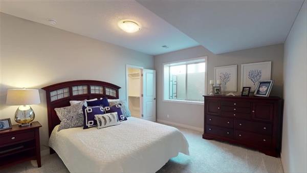 Basement Shower and Second Basement Bedroom